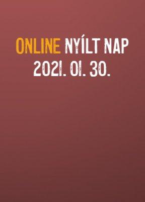 online-nyiltnap-20210130