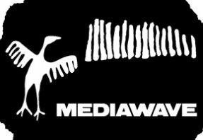 Mediawave Fesztivál 2013